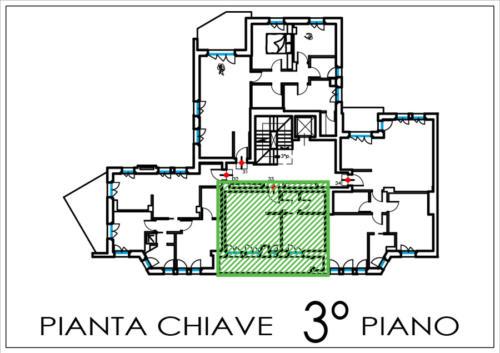 app.33-pianta